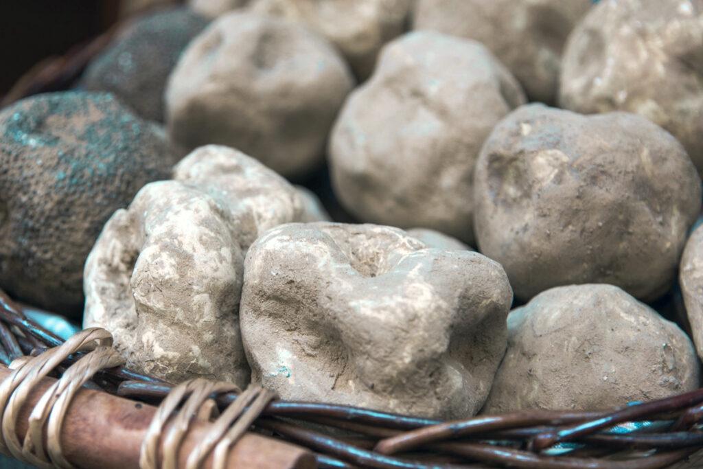 Khám phá nguyên liệu chống lão hóa mới: Nấm Truffle Trắng